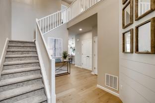 Essex - Enclave at Founder\'s Village: Castle Rock, Colorado - Dream Finders Homes