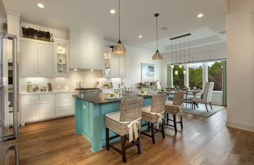 Kitchen-in-Tanner-at-Headwaters-in-Dripping Springs