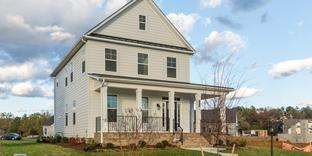 Hawthorne - Lauradell: Ashland, Virginia - Eagle