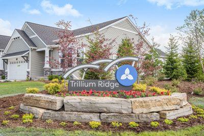 Trillium Ridge