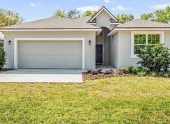 Chapman Oak - Eleven Oaks: Eustis, Florida - Eleven Oaks