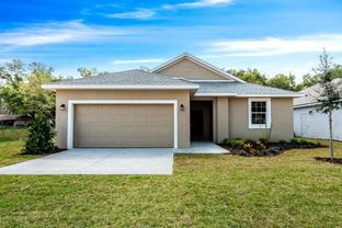 Willow Oak - Eleven Oaks: Eustis, Florida - Eleven Oaks