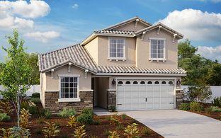 Syrah - Magnum at Villa Fiore: Lodi, California - Elliott Homes