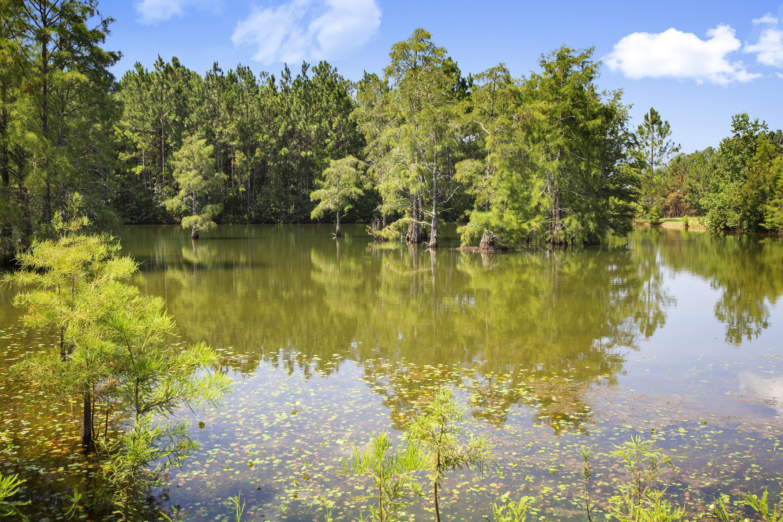 'Audubon Lake' by Elliott Homes in Biloxi
