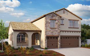 Sangiovese - Magnum at Villa Fiore: Lodi, California - Elliott Homes
