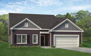 Elizabeth Springs by ExperienceOne Homes, LLC in Raleigh-Durham-Chapel Hill North Carolina