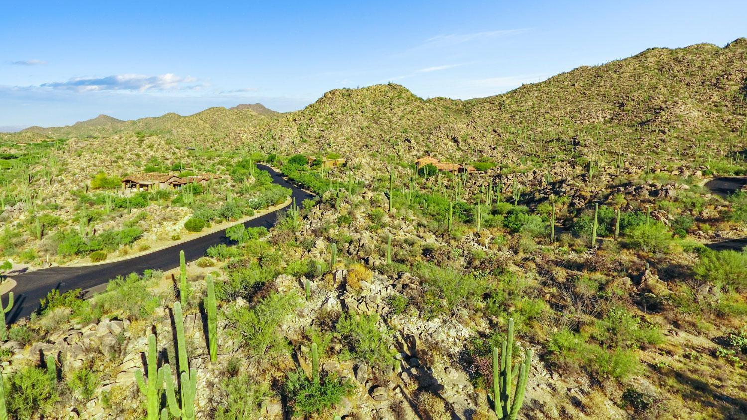 'Stone Canyon' by Stone Canyon in Tucson