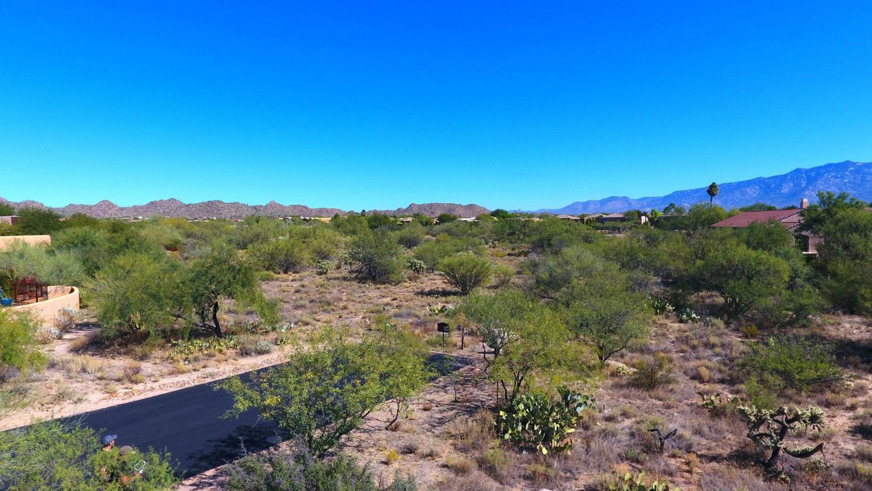 'Vermillion' by Vermillion in Tucson