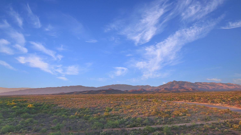 'Windmill' by Windmill in Tucson