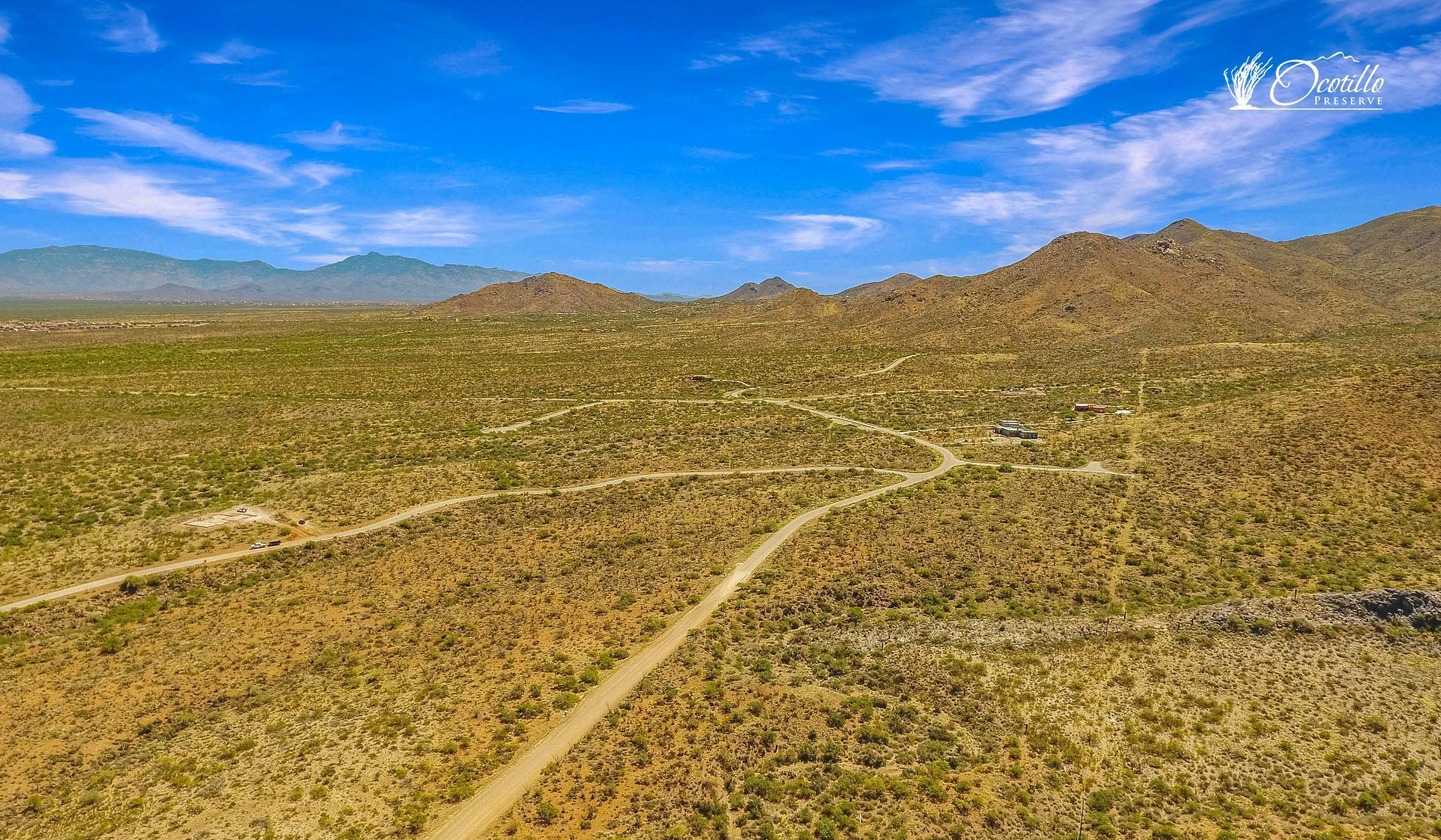 'Ocotillo' by Ocotillo in Tucson