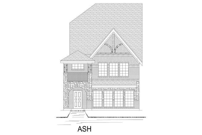 Ash - TH