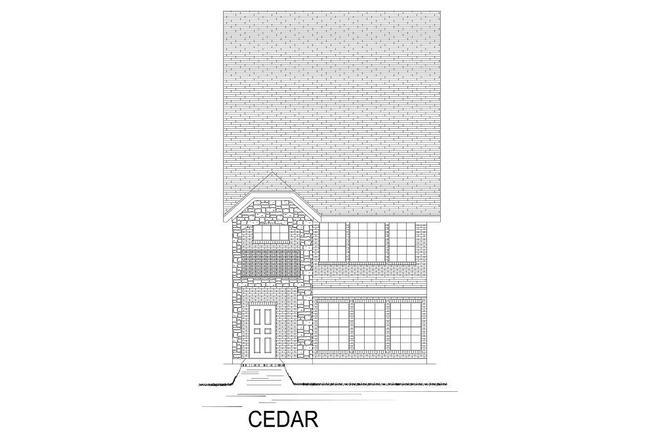 Cedar - TH