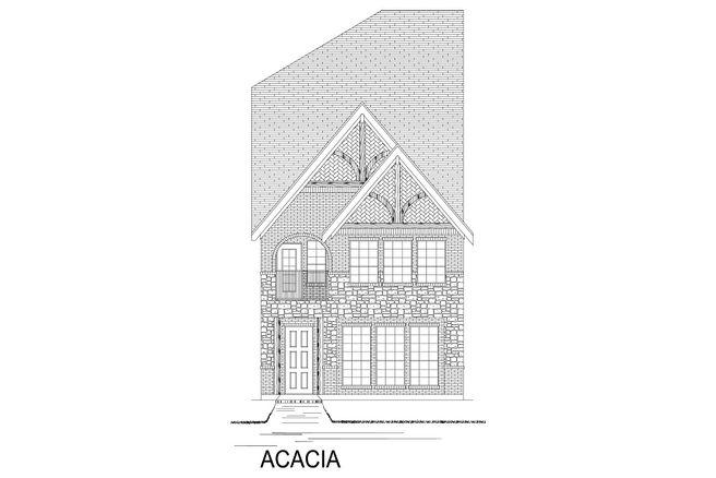 Acacia-TH