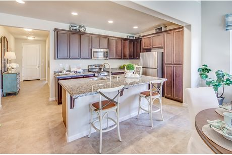 Kitchen-in-The Grand Trellis-at-Rose Park in The Village-in-Modesto