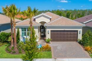 Bella - Valencia Del Sol: Wimauma, Florida - GL Homes