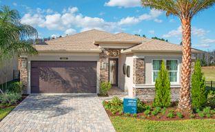 Winding Ridge by GL Homes in Tampa-St. Petersburg Florida