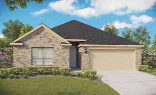 Premier Series - Beech - Sunfield: Buda, Texas - Gehan Homes