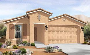 Castillo Series - Acacia - IronWing at Windrose: Litchfield Park, Arizona - Gehan Homes