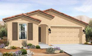 Castillo Series - Bluebell - IronWing at Windrose: Litchfield Park, Arizona - Gehan Homes