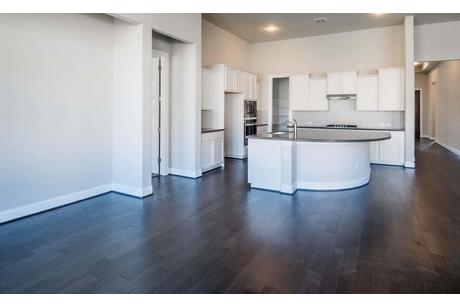 Kitchen-in-Tulane-at-Champion Heights in Boerne - Classic  80' Lots-in-Boerne