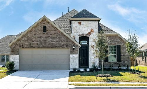 Palm-Design-at-The Park at Blackhawk - Premier-in-Pflugerville
