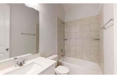 Bathroom-in-Palm-at-Highpoint Hill-in-Burleson
