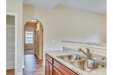Wet-Bar-in-The Lily-at-Azalea Place-in-Millbrook