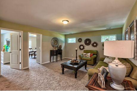 Media-Room-in-Bradley I B-at-Pocalla Springs-in-Sumter