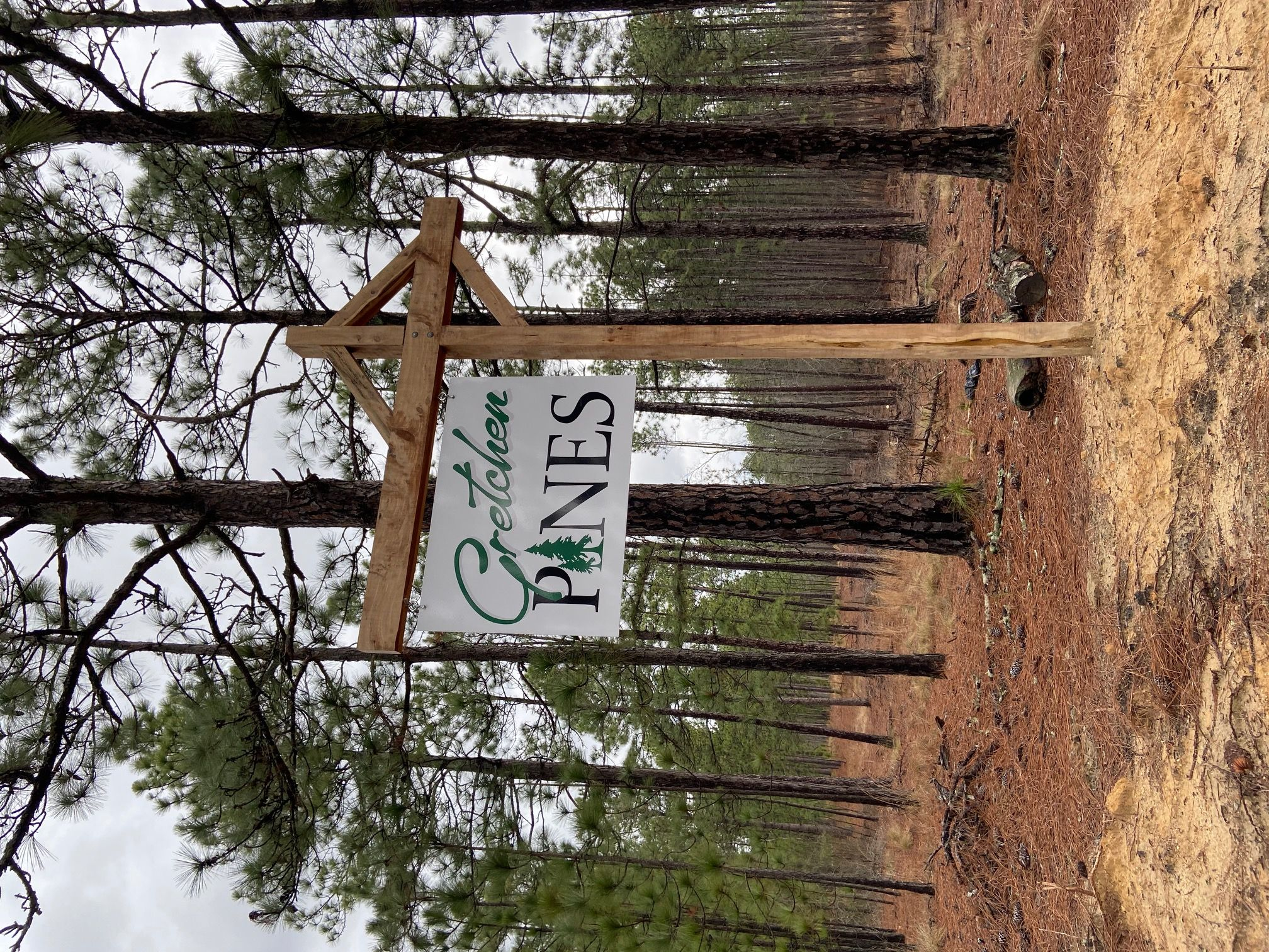 'Gretchen Pines' by Gretchen Pines in Pinehurst-Southern Pines
