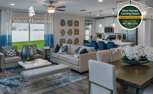 Cypress Hammock by Hanover Family Builders in Orlando Florida