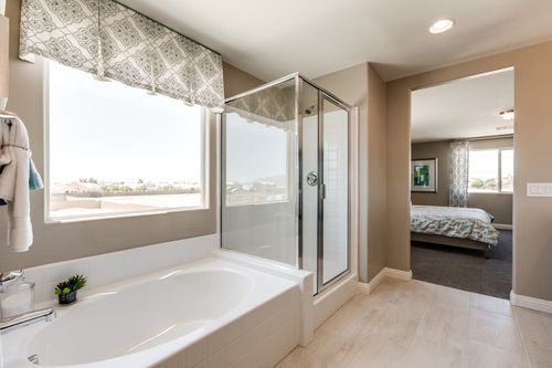 Bathroom-in-Residence 2370-at-Northridge-in-North Las Vegas
