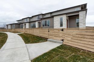 Akin - Hartford Homes at Trailside Townhomes: Timnath, Colorado - Hartford Homes