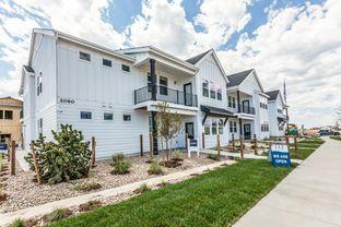 Rockefeller - Hartford Homes at Raindance - Condos: Windsor, Colorado - Hartford Homes