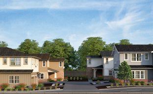 Larkey Estates by Haven Development in Oakland-Alameda California