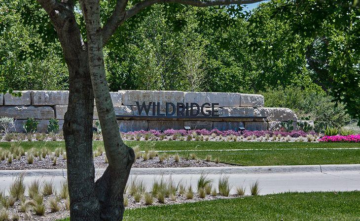Wildridge: 70ft. lots,75068