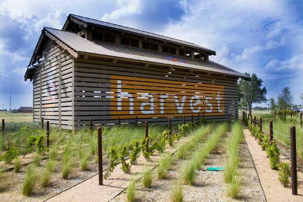 Harvest: 50ft. lots,76226