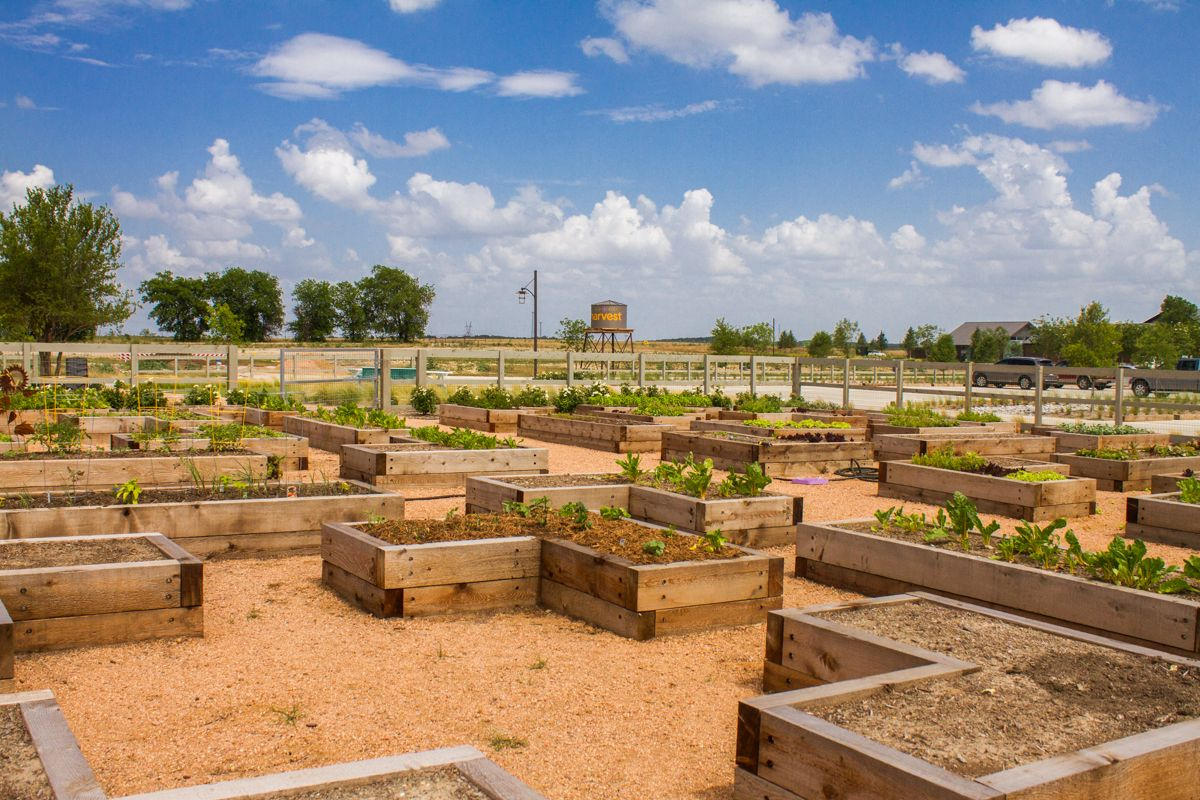 Harvest: Meadows in Northlake, TX :: New Homes by Highland Homes