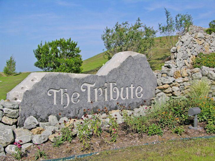 The Tribute: Westbury: 50ft. lots,75056