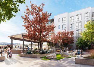 Plan B6.2 - The Linden: South San Francisco, California - The Linden