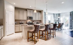 Balmoral by HistoryMaker Homes in Houston Texas