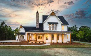 Peartree Farms by Holland Homes in Auburn-Opelika Alabama