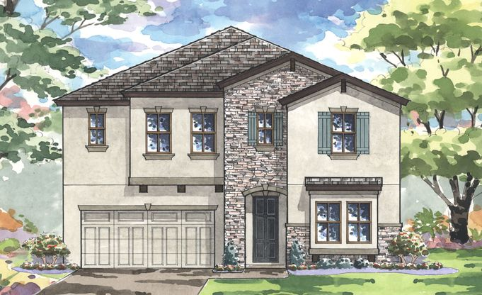 Pelican Plan at Triple Creek in Riverview, FL by Homes by ... on thorne bay house plan, shenandoah house plan, grouse house plan, renaissance house plan, elm grove house plan,