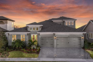 Bays Ii Waterset Apollo Beach Florida Homes By Westbay