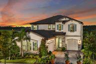 Triple Creek by Homes by WestBay in Tampa-St. Petersburg Florida