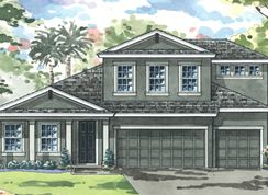 Hyde Park IV - Waterset: Apollo Beach, Florida - Homes by WestBay