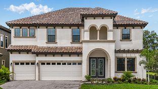 Verona - Hawks Fern: Lithia, Florida - Homes by WestBay
