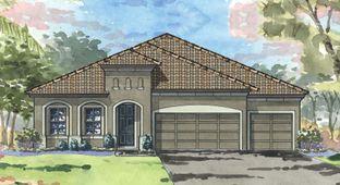 Islamorada I - Hawkstone: Lithia, Florida - Homes by WestBay