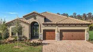 Bayshore I with Sunroom - Starkey Ranch: Odessa, Florida - Homes by WestBay