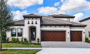 Swann IV - Starkey Ranch: Odessa, Florida - Homes by WestBay