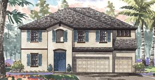 Westshore I - Triple Creek: Riverview, Florida - Homes by WestBay